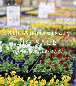 18th Anniversary BIG SALE!