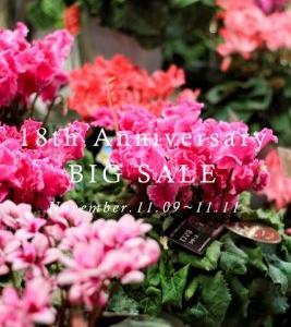 引き続き。。18th Anniversary SALE よろしくです(^_-)