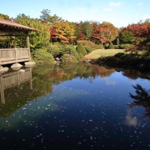 令和元年 初秋の平岡樹芸センター
