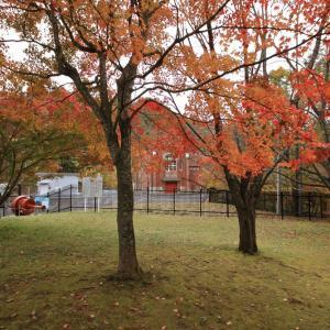 令和元年10月 紅葉の夕張市(滝ノ上公園・シュウパロ湖)