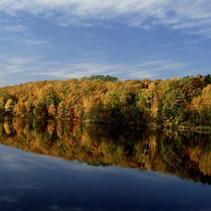 秋の西岡水源地(西岡公園)