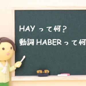 【スペイン語】HAYって何?動詞HABERってどういう意味?