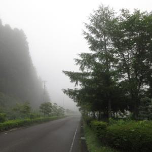 濃霧だからこそ