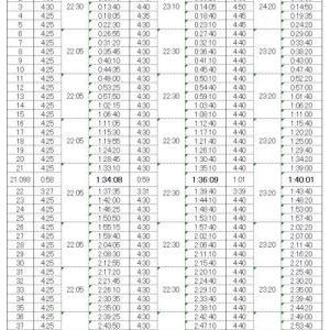 2020勝田マラソン 前日の松竹梅(目標)の下方修正(悲)