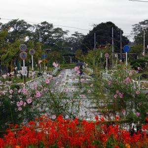 雨の交通公園