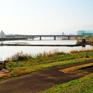 関川の工事
