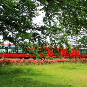 リゾート列車「雪月花」が通る。