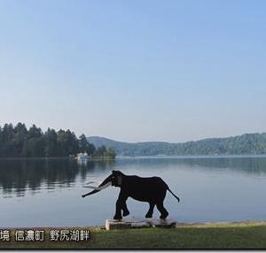 晴天優勢!大雨の九州南部も小康状態。ただ北海道は大気不安定!不安定の影響どこまで?(200605)