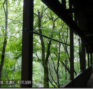 明日にかけて梅雨末期のような大雨に!(200613)
