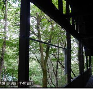 北日本は下り坂。西~東日本は夏空 猛暑継続!夕立の可能性は?(200814)