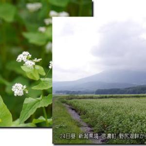 秋雨前線 九州に停滞。前線北側に上空寒気南下し大気不安定。次の大雨?台風は?(190825)