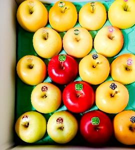 今年も、リンゴが届く~っ♪v(*'-^*)^☆