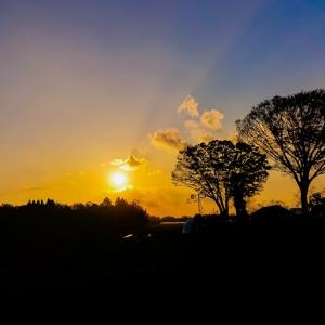 さてさて、夕陽シリーズです~っ♪v(*'-^*)^☆