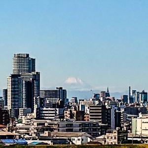 今日は、都内は霞んでいて、富士山が薄~っ((((;゜Д゜)))
