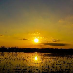 今日の、夕陽シリーズと夜の始め頃です❗♪v(*'-^*)^☆