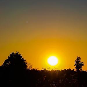 今日の、夕陽シリーズです~っ♪v(*'-^*)^☆