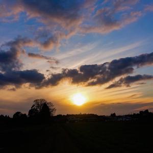 今日の、夕陽シリーズと満月です~っ♪v(*'-^*)^☆