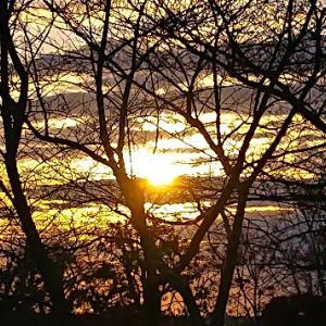 朝の散歩で、朝陽と月が綺麗でした❗♪v(*'-^*)^☆