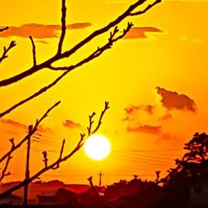 今日の、夕陽シリーズ~っ♪v(*'-^*)^☆
