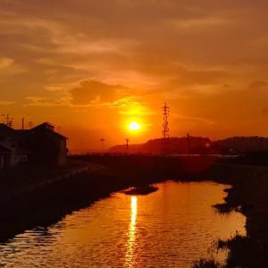 今日の、夕陽シリーズです~っヽ(*´∀`)ノ♪