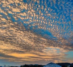 今日は、夕陽と言うよりは、雲が圧巻でした~ぁ(*´∀`)♪