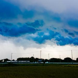 今日は、ゲリラ豪雨でビチョビチョです❗o(T□T)o
