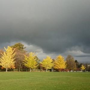 湯川にて 秋の天気に 裏切られ