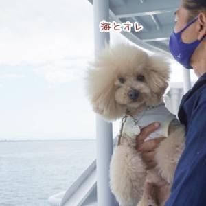 ハルin神戸~海から見た神戸