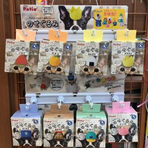 【ひごペットパームシティ和歌山店】たーなーの新商品紹介ブログ♪