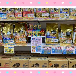 【ひごペットフレンドリーパームシティ和歌山店】★プロフェッショナルバランス★