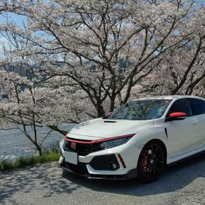 ドローンで桜とR姫🌸