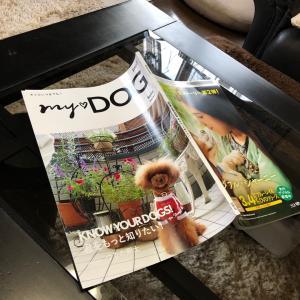 本の表紙に載りました。