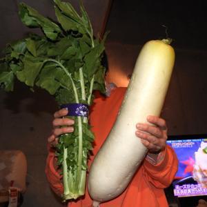 4.6キロの白菜とツグラ問題