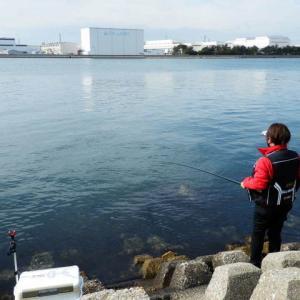 加古川尻防波堤にてメバル撃沈からの… 東二見人工島でも超撃沈!メバルてこんなに難しかったっけ?