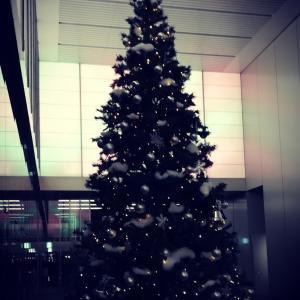 2019/12/23 クリスマスツリー2019
