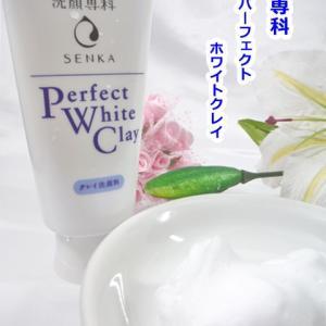 洗顔専科 パーフェクト ホワイトクレイ    ワントーン明るいすっぴん