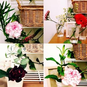 毎回違う組み合わせのお花の定期便を利用してみました。  花が長持ちするので豪華です。