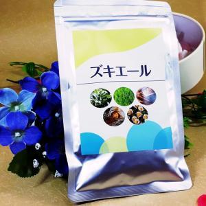 ズキエール   和漢植物成分のサプリメントを飲み続けて低気圧による頭痛持ちの予防と改善に