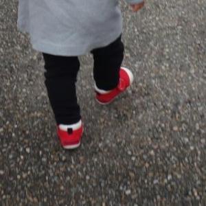 お客様(赤い靴の野生児)♬