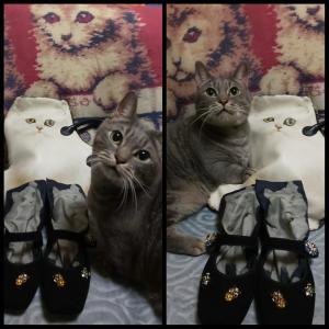 猫づくしのコーディネートとキラキラシューズ。