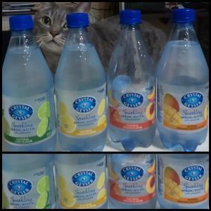炭酸水好き