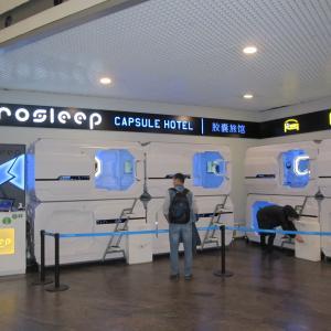 #081 エジプト旅行2020【7日目】~シェレメーチエヴォ国際空港~
