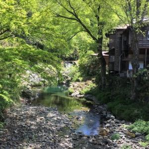 旅ラン「甲州道走膝痛シ」…立川~小仏峠~相模湖、その3(高尾)
