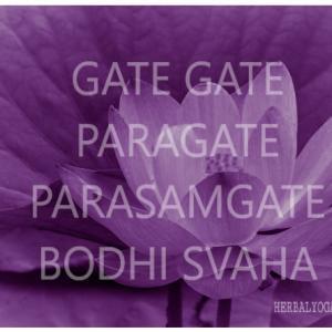 旧正月【新月の瞑想】~ヨガ的祈り、宣誓のサンカルパ~