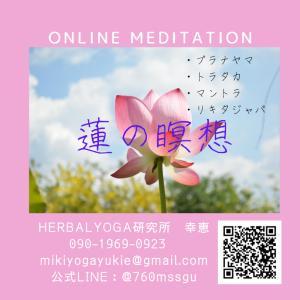 BLOOMING~瞑想習慣の勧め~