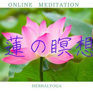 【初体験】ZOOMで「蓮の瞑想」レッスンでした♪