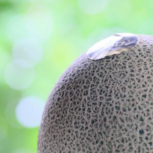 完熟の極み:飯岡の貴味メロン