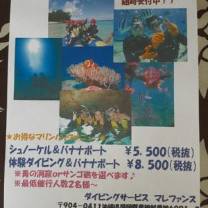 3月限定キャンペーン☆体験ダイビング・シュノーケル・バナナボート〜ぽかぽか恩納村〜