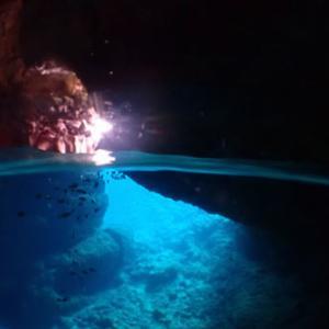 8月5日 恩納村青の洞窟体験ダイビング〜アゲイン編〜