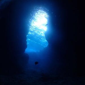 11月18日 青の洞窟体験ダイビング〜あげいん〜